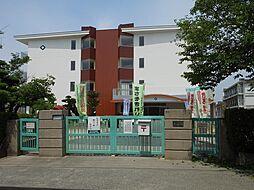 老松小学校55...