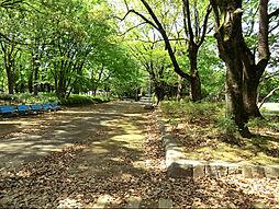 千代田公園 (...