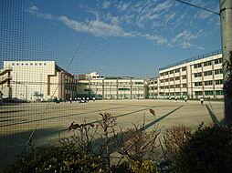 志村第三中学校...