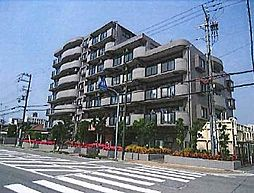 兵庫県姫路市車崎2丁目の賃貸マンションの外観
