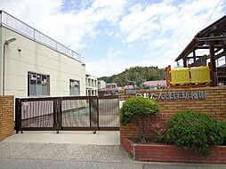 たんぽぽ幼稚園...