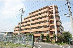 ライオンズマンション東新小岩[2階]の外観