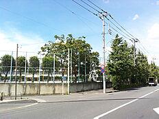 本村小学校 約220m