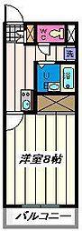 埼玉県川口市東領家3丁目の賃貸マンションの間取り