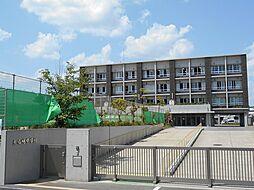 大山崎中学校