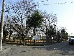 神立公園(90...