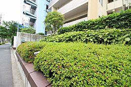 木の匂い、緑、空の青さ、自然の温もり、そして落ち着いた住宅地に馴染む、上質でかつ建物を魅力的に魅せるフォルム。