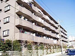 埼玉県さいたま市南区辻6丁目の賃貸マンションの外観