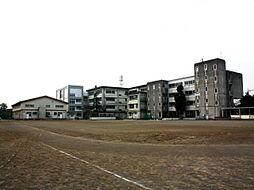 白鳥中学校