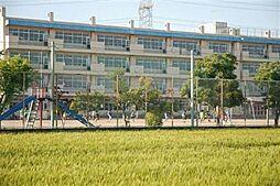 片柳小学校 1...