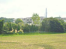 富士見中学校近...