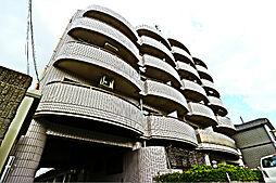 メゾン・ビオラ[4階]の外観