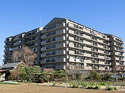 ソフィア草加新田