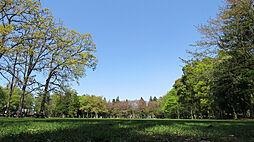 淵野辺公園写真...