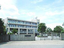 香澄小学校
