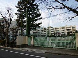 区立梅丘中学校