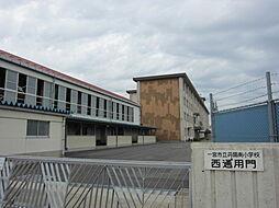 丹陽南小学校