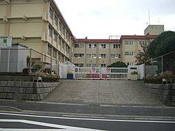 桜ケ丘東小学校...