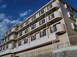 日神パレス三ッ沢公園[1階]の外観