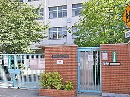 阪南小学校