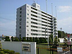 滋賀県高島市安曇川町西万木の賃貸マンションの外観