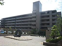 サーパスシティ木太一番館[406号室]の外観