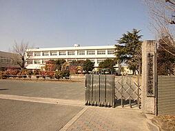 新知小学校