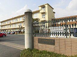 木津小学校