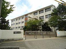 中学校第三中学校まで1157m