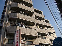 新川崎ロイヤルパレス[305号室]の外観