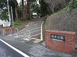 枝光公園(10...