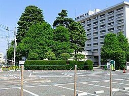 東京慈恵会医科...