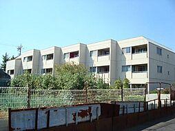東京都府中市矢崎町5丁目の賃貸マンションの外観