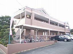 メイプルハウス[2階]の外観