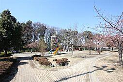 井沼方公園51...