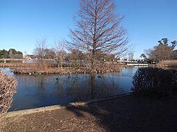 水城公園至近。