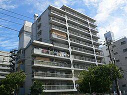小島スカイハイツ[8階]の外観
