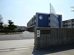 大浜小学校