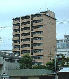 パレグリシーヌ 高井田 高井田5分[5階]の外観