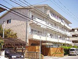 サンラブール[4階]の外観