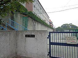 御幸山中学校 733m