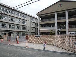 氷丘小学校