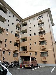 第一松尾ビル[504号室]の外観