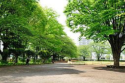 旭が丘中央公園...