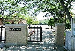 池子小学校
