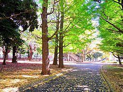 -世田谷公園-