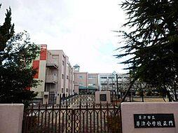 草津小学校