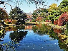 「小石川植物園」が近く、緑がいっぱいです。