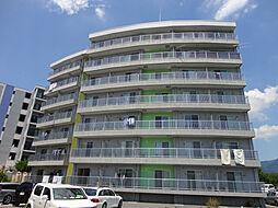 BRANDNEW City2 E棟[1階]の外観