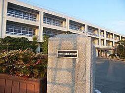 学区:鹿島中学...